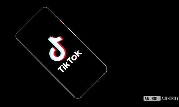 India prohíbe la aplicación china, incluido TikTok