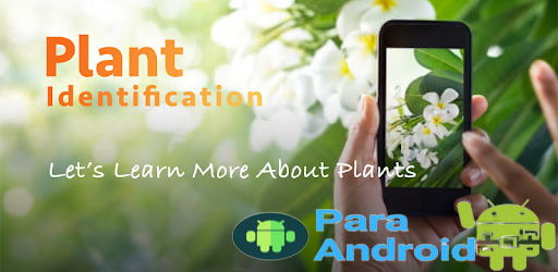 LeafSnap – Plant Identification – Apps on Google Play