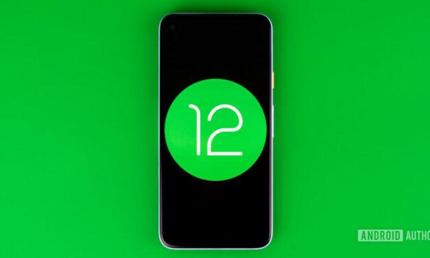 ¡La vista previa para desarrolladores de Android 12 ya está disponible para píxeles!