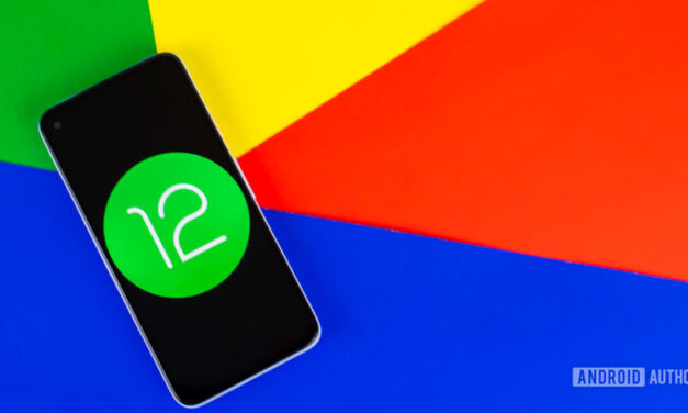 Nos dijiste: aquí está tu nombre de código favorito de Android 12