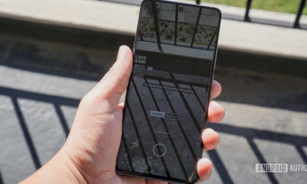 ¿Cuándo fue la última vez que usó el modo panorámico en su teléfono?