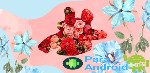 Laki Lady Plus – Apps on Google Play